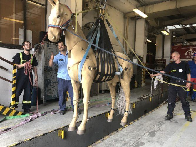 Prednáška a výcvik: Záchrana koní a veľkých HZ